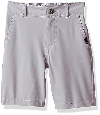 0d1571a6a0 Amazon.com: Quiksilver Union Amphibian Little Boy 14 Shorts: Clothing
