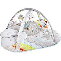 Skip Hop Baby Play Gym, Silver Lining Cloud, Grey