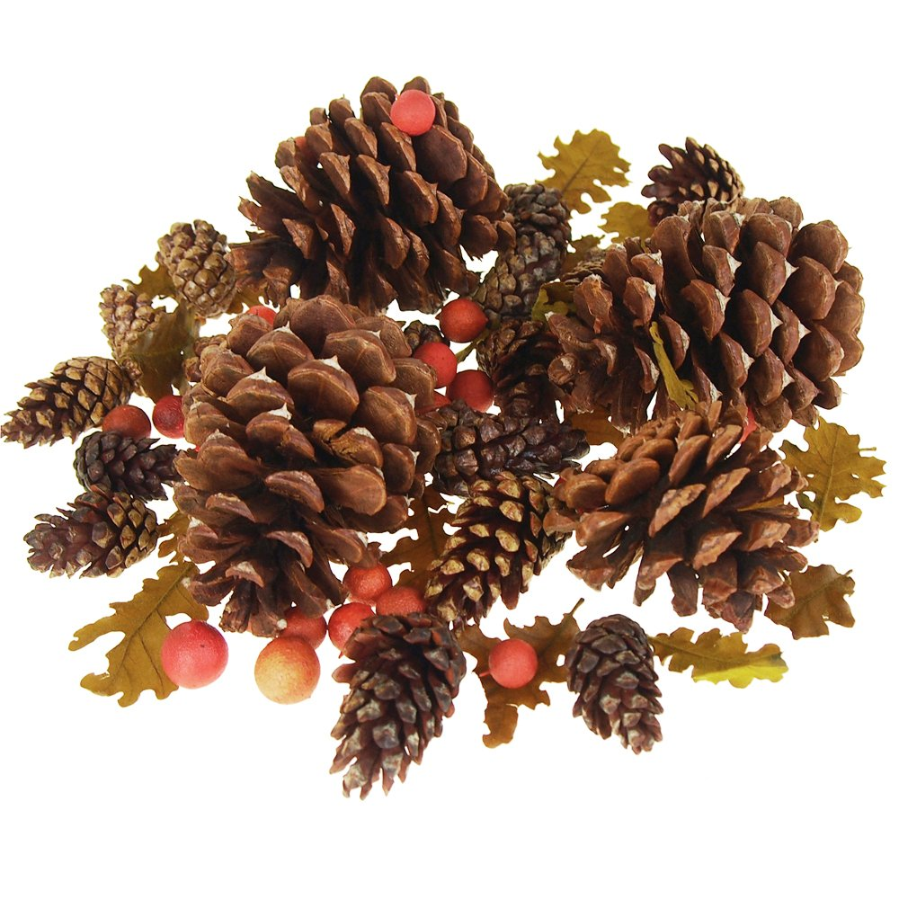 Homeford Dried Scented Pine Cones Natural Forms with Red Berries, 40-Piece
