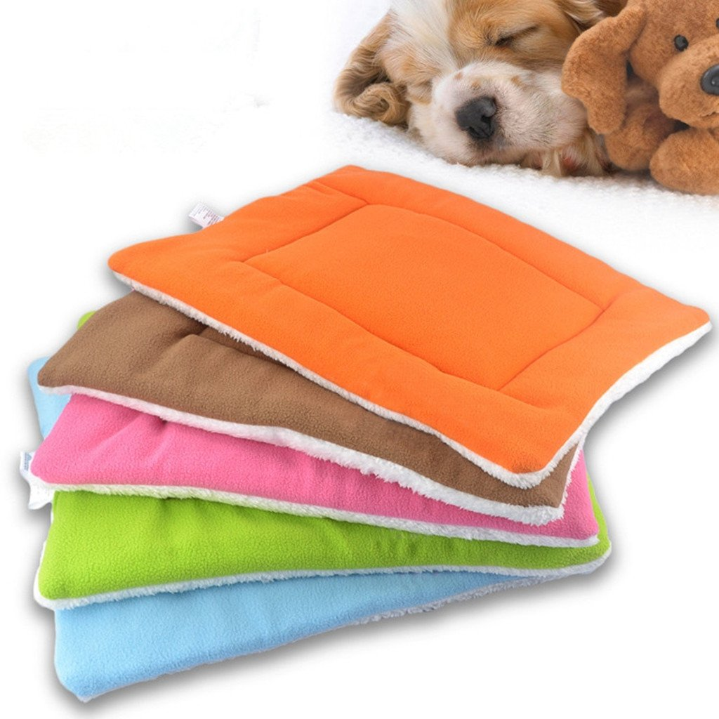 acheter un tapis pour chien guide d 39 achat complet. Black Bedroom Furniture Sets. Home Design Ideas