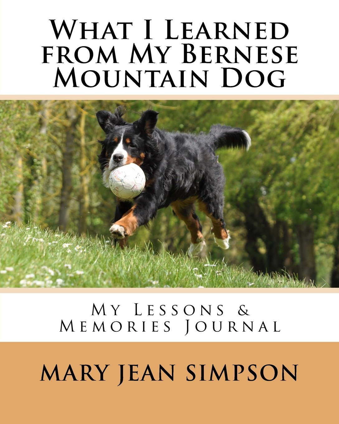 What I Learned From My Bernese Mountain Dog My Lessons