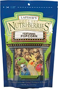 LAFEBER'S Gourmet Popcorn Nutri Berries Treat, Made with Non-GMO and Human-Grade Ingredients, for Cockatiels and Parrots