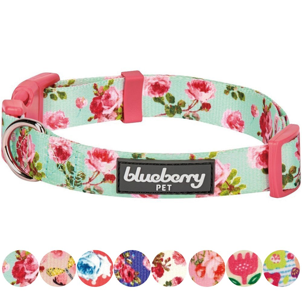 Blueberry Pet 8 Patterns Spring Scent Inspired Floral Rose Print Turquoise Dog Collar, Small, Neck 12''-16'', Adjustable Collars for Puppies & Small Dogs