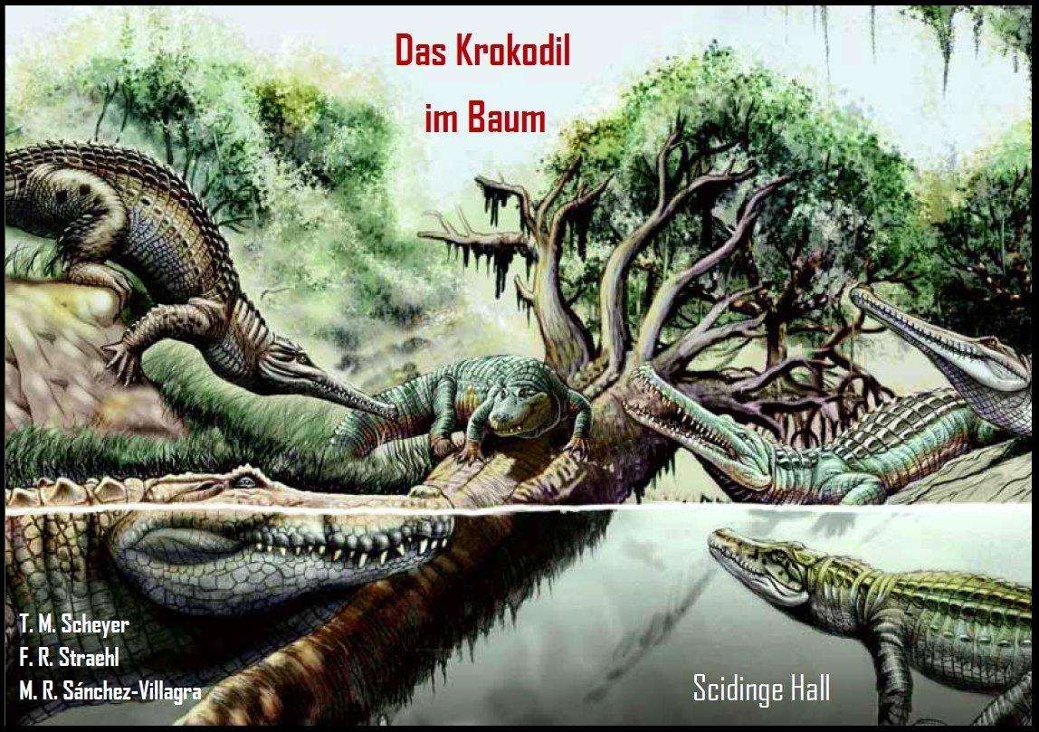Das Krokodil im Baum - Eine Ausstellung über Evolution und ...
