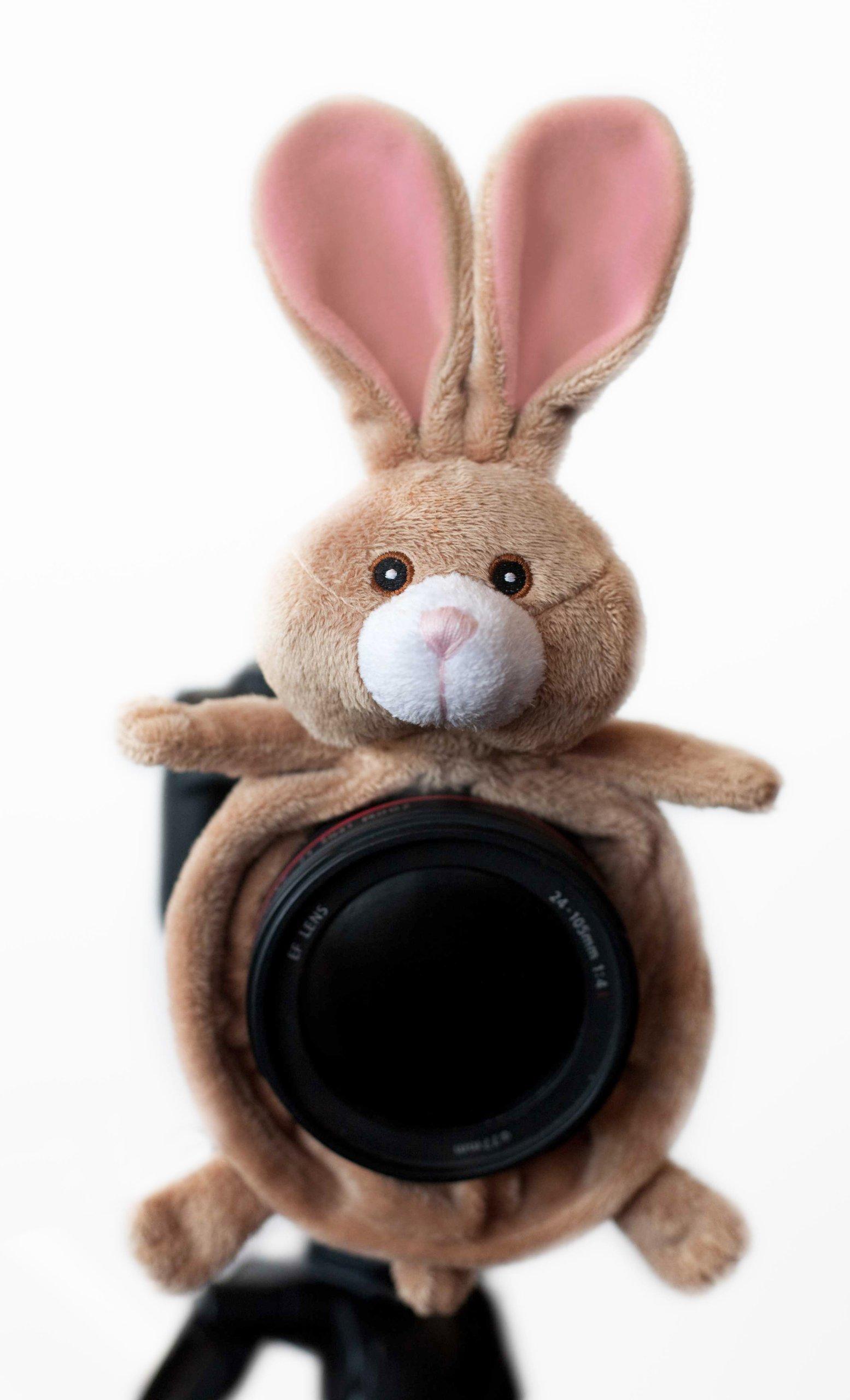 Shutter Huggers BUN001 Camera Lens Stand (Brown) by Shutter Huggers