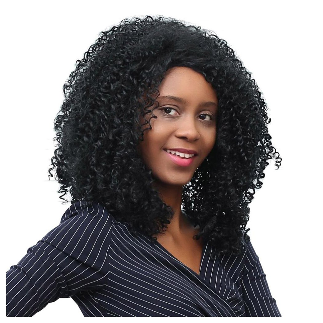 inkachレディースAfro Curly Wig Shaggy耐熱性合成毛ウィッグブラックレディース  ブラック B071QXBBK3