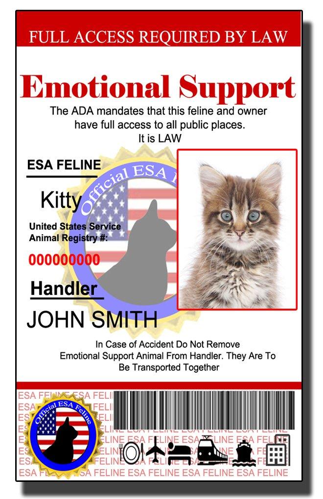 Holographic Emotional Support Animal Feline | Cat ID