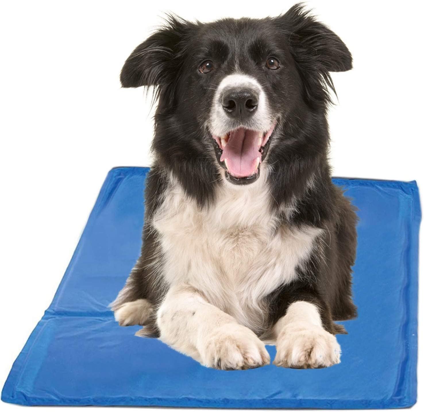 Chillz Cooling Pressure Activated Gel Dog