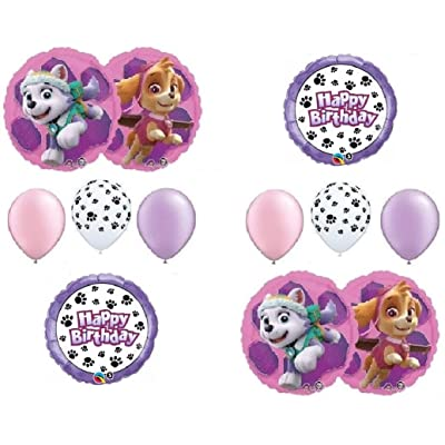 PAW PATROL SKYE & EVEREST 10 PC. Birthday Balloons Decoration Supplies Party Chase Ryder: Toys & Games