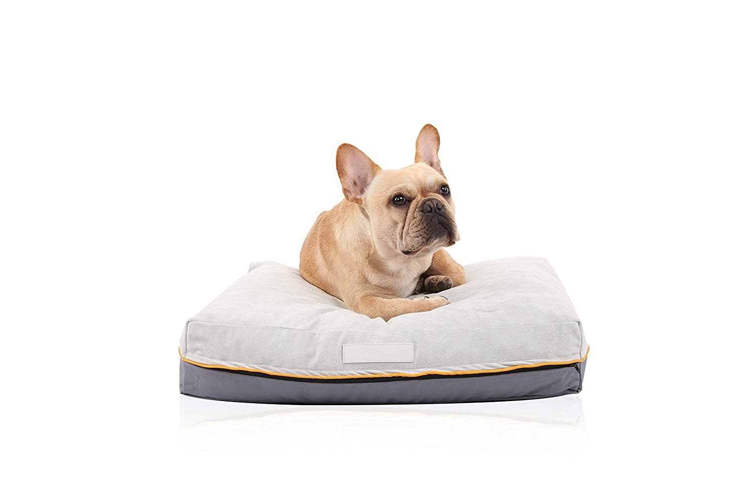 A Glance At Dog Bed Memory Foam Large