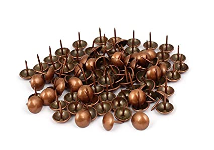 Delicieux Sydien 100 Pcs Metal Round Head Upholstery Tack Nail Decorative Nails For Furniture  Upholstery Nails(