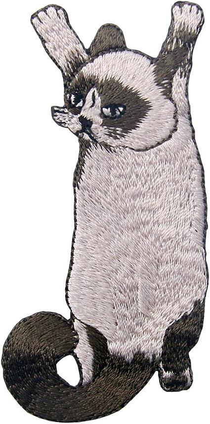 Parche termoadhesivo para la ropa, diseño de Lindo gato escalada