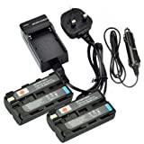 DSTE® 2-Pack Spare Battery and DC01U Travel Charger Kit for Sony NP-F550 CCD-RV100 CCD-RV200 CCD-SC5 CCD-SC9 CCD-TR1 CCD-TR215 CCD-TR940 CCD-TR917 Neewer CN-160 Light as NP-F330 NP-F530 NP-F570