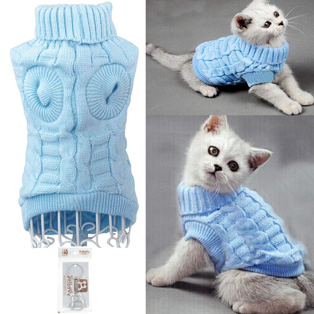 Top 10 Best Cat Apparel