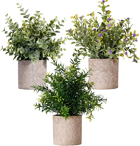 Mini Potted Artificial Eucalyptus Plants 3 Pack Set Gypsophila Rosemary Greenery In Pots Small Fake Plant Plastic Flower Green Real Faux Herbs For Home Wedding Office Balcony Tabletop Decoration