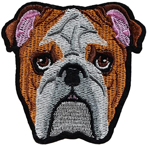 Ecusson perro Bulldog Pitbull PATCHE 8 x 8 cm Biker tatuaje Goth ...