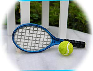 New Fairy Garden Miniature Tennis Racket and Ball Dollhouse Magic Scene Supplies Accessories Na-0302F