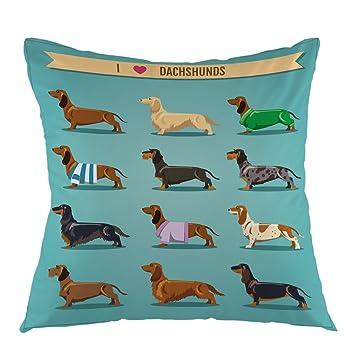 Amazon.com: Funda de almohada con diseño de acuarela con ...