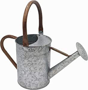 Tryer Vintage Farmhouse Watering Can (Galvanized Iron with Rusty Zinc Handles)
