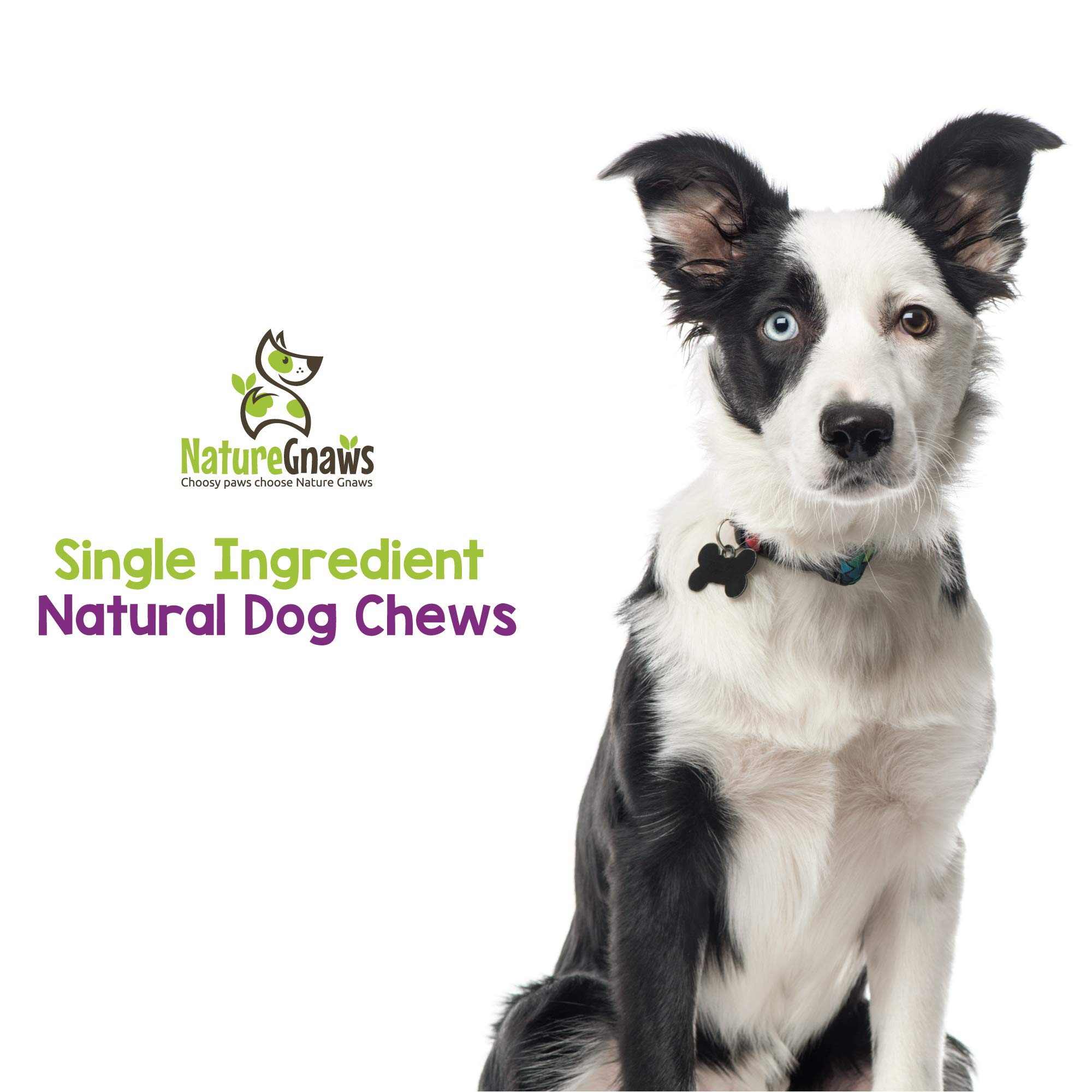 Nature Gnaws Braided Bully Stick Bites 2-4'' (15 Pack) - 100% Natural Grass-Fed Free-Range Premium Beef Dog Chews by Nature Gnaws (Image #6)