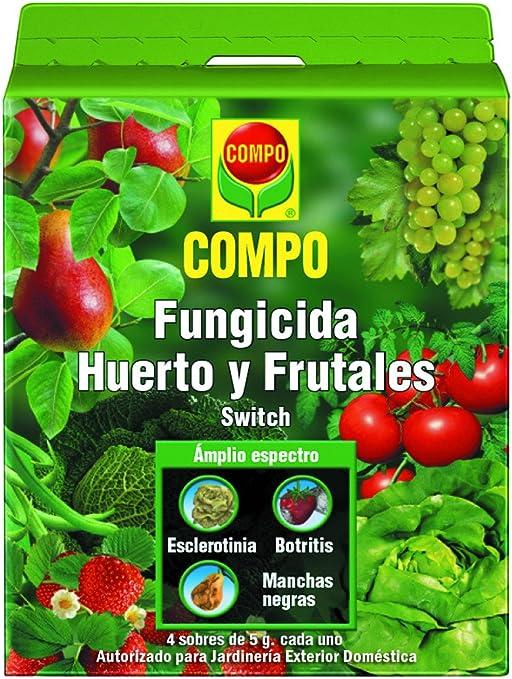 Compo 1691102011 Fungicida huerto y frutales, 20x15x8 cm: Amazon ...