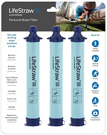 The 8 best family water filter