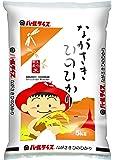 【精米】長崎県産 白米 ひのひかり 5kg 平成29年産
