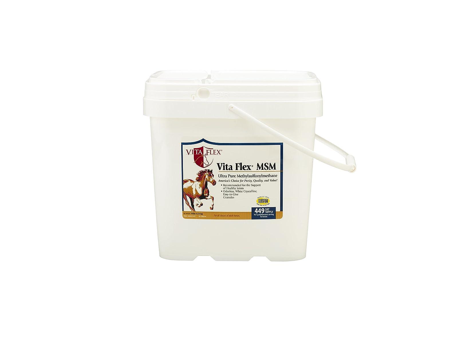 Vita Flex MSM Ultra Pure Horse Joint Supplement 3000095 - 1