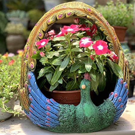 zenggp Ollas De Pavo Real Verde Creativo Cactus Suculenta Maceta Flor Maceta Jardín Grande Decration Al Aire Libre: Amazon.es: Hogar