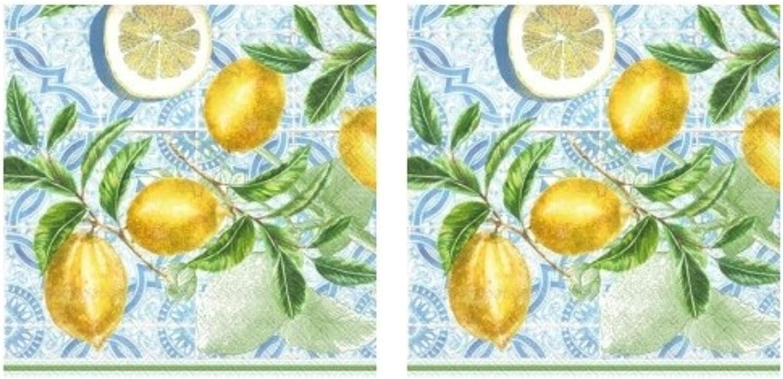Citrus Limon Lemons 3-Ply Paper Cocktail Napkins 40-Count, Florida Barware Beverage Bundle