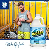 OdoBan 1 Gal Concentrate 4-Pack, Fresh Linen