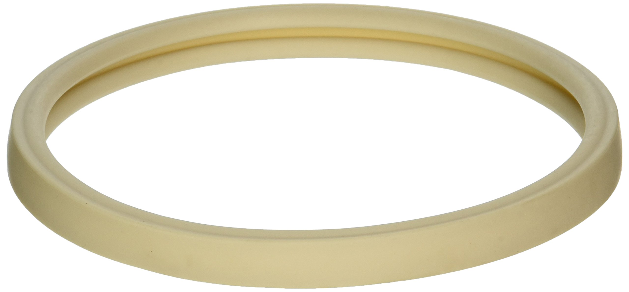 Pentair 79101600Z Lens Gasket Replacement Kit AmerLite Pool and Spa Light