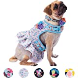 Blueberry Pet 3 Patterns Soft & Comfy Made Well