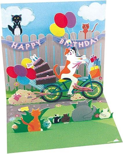Carte Pop Up Greating Card Relief 3d Anniversaire Chat Velo Amazon Fr Fournitures De Bureau