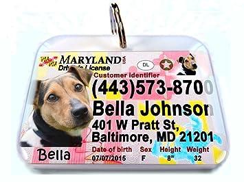 Amazon.com: Nueva Maryland Estado Licencia de conducir ...