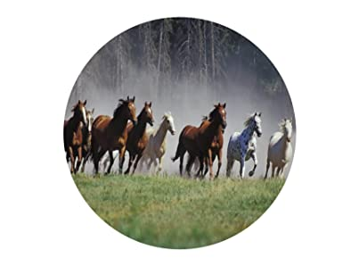 """HORSE RACING RIDING 7.5/"""" ROUND CAKE TOPPER /& CUPCAKE TOPPERS ICING WAFER RICE"""