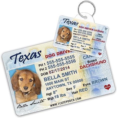 Amazon.com: Texas Licencia de conducir Custom – Etiquetas ...
