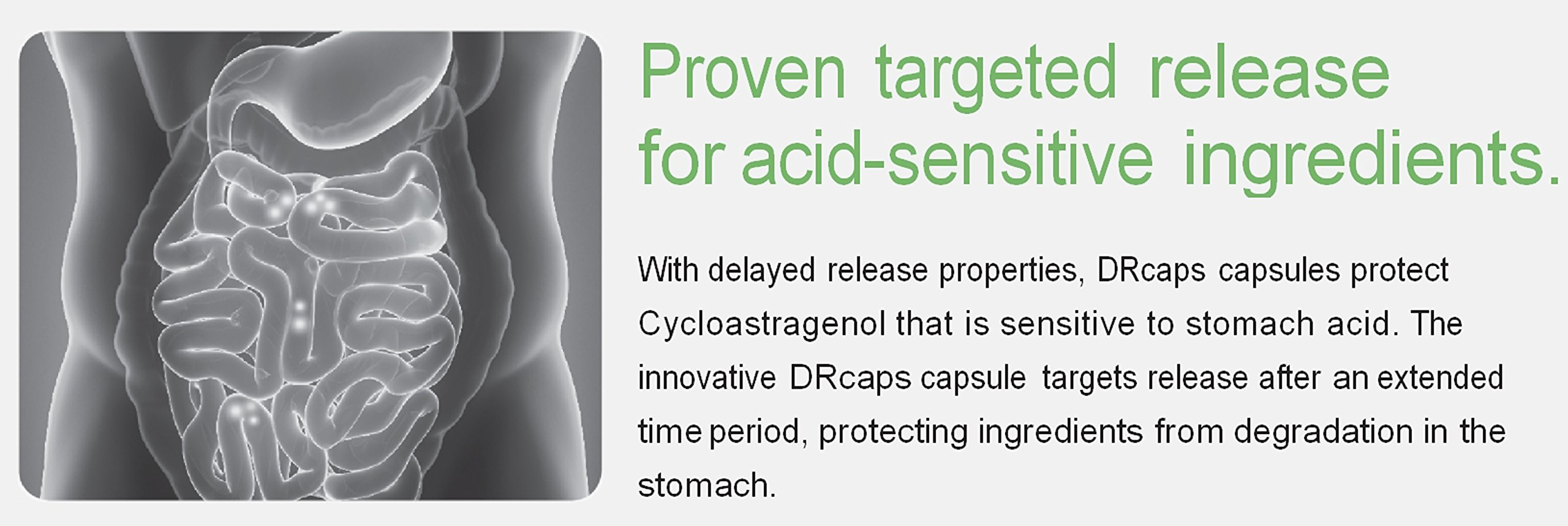 Stomach Acid Protected & Super-Absorption Cycloastragenol 99%, Made in USA, 10mg, 90caps by Nature's Bliss (Image #6)