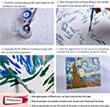 iFymei Paint by Numbers for Adults , DIY Painting