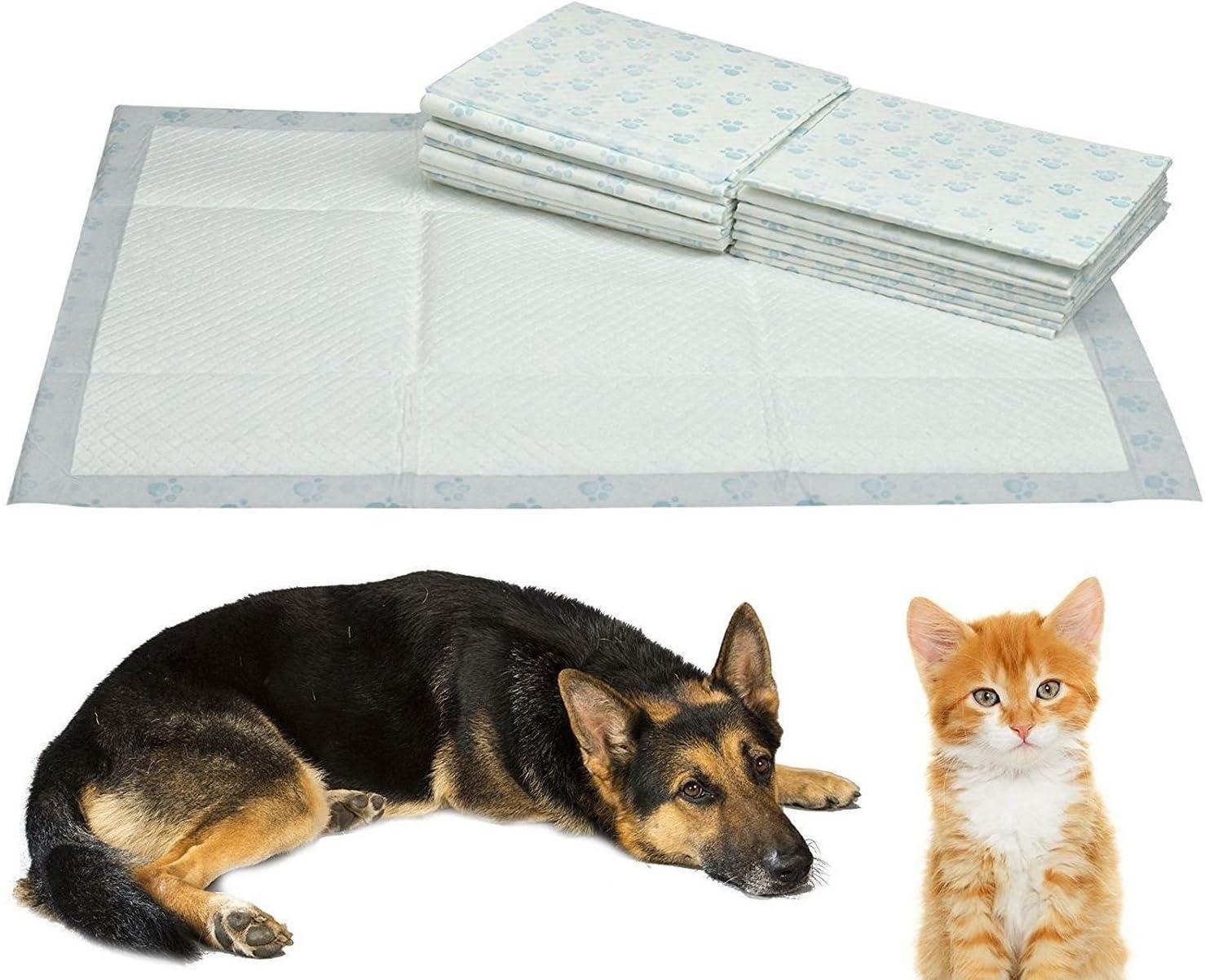 PY Trainin 100/60/x 40/cm con dise/ño de gato 60/x 40/cm Larg Trainer tren Ppy formaci/ón almohadillas para inodoro para entrenamiento de cachorro de T T Pee W Pee Wee Mats Dog Pee Wee.. Generic.