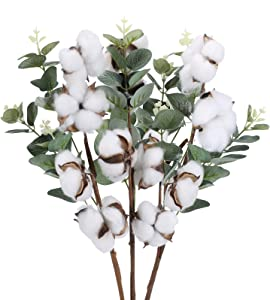 GTIDEA 3 Pack 18 inches Natural Dried Cotton Stems Decor with Eucalyptus Stems Farmhouse Artificial Flower Vase Filler Fall Floral Arrangement DIY Home Party Decor