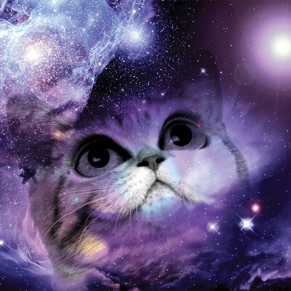 JP London 2 Thick Heavyweight Gallery Wrap Wall Canvas Art Space Cat Galaxy Nebula Stars Kids 26 Inch SQCNV2252
