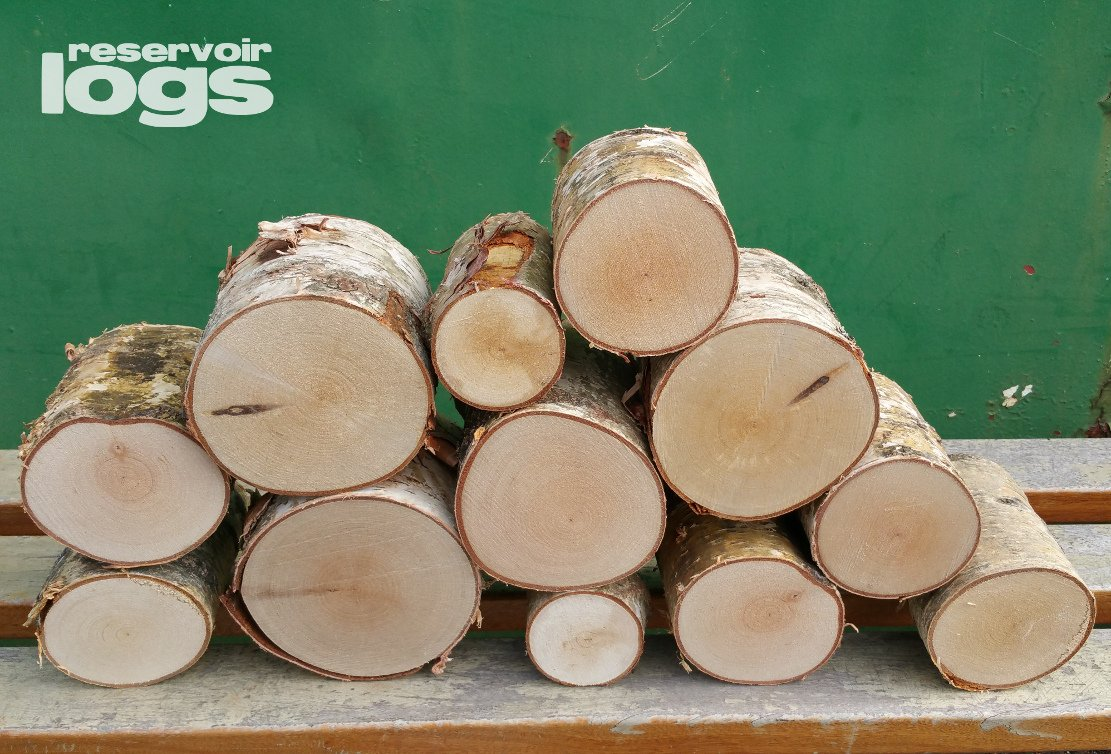 reservoir logs The Little Box of Decorative Birch Logs 12cm Kiln Dried Full Round Display Logs Fine Sawn Ends