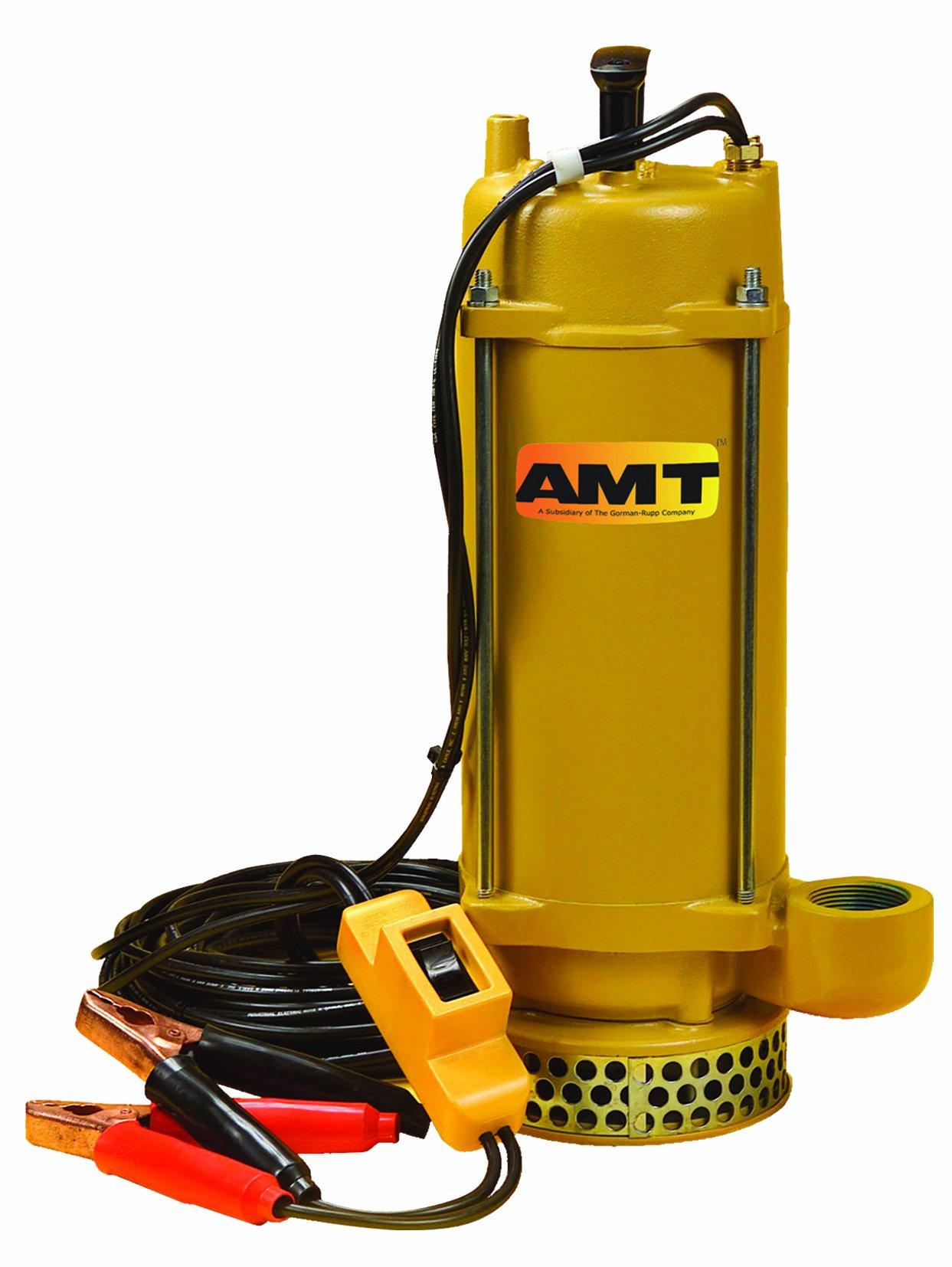AMT Pump 5890-DC Submersible Pump, Aluminum, 1/3 HP, 12V, 1-1/2'' NPT Female Discharge Port