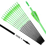 Pointdo 30inch Carbon Arrow Fluorescence Color Targeting and Practice and Hunting Arrows for Compound Bow and Recurve…