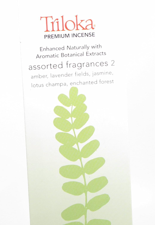 【再入荷!】 Triloka – プレミアムIncense Assorted 2 Fragrances Assorted プレミアムIncense 2 – 10スティック( S )クリアランス価格 B0016ARKJM, ガラス食器の 桂:4a5063d2 --- egreensolutions.ca