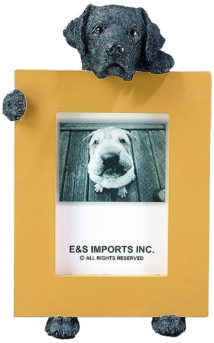 de5177f5 Amazon.com: Black Labrador Retriever 2.5