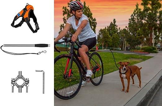 Correa para Bicicleta de Perro Securpup con arnés (2 Piezas ...