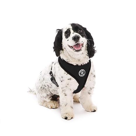 Amazon.com: Gooby Arnés de malla suave para perros ...