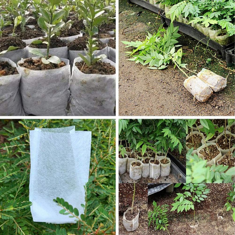 AOWA 1 Pc 200 Cell Seedling Starter Tray Extra Strength Seed Germination Plant Flower Pots Nursery Grow Box Propagation 53 27.5cm